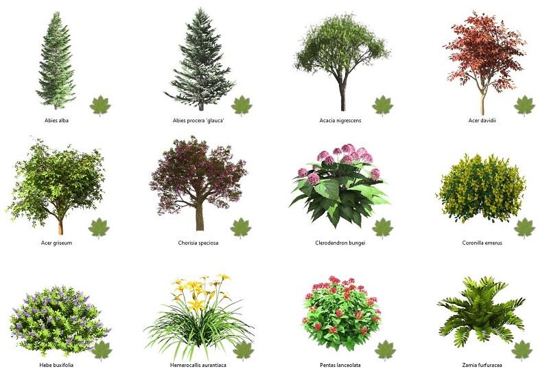 El nuevo editor de plantas genera increíbles representaciones de plantas