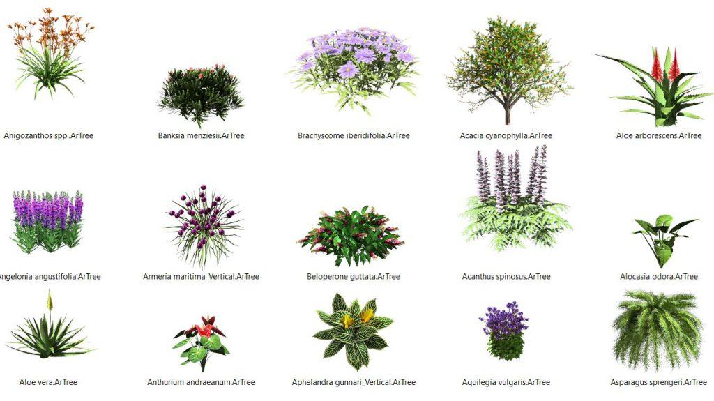 ¡La base de datos de plantas siempre está creciendo!