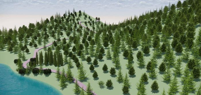 ¿Cómo se modela un bosque?